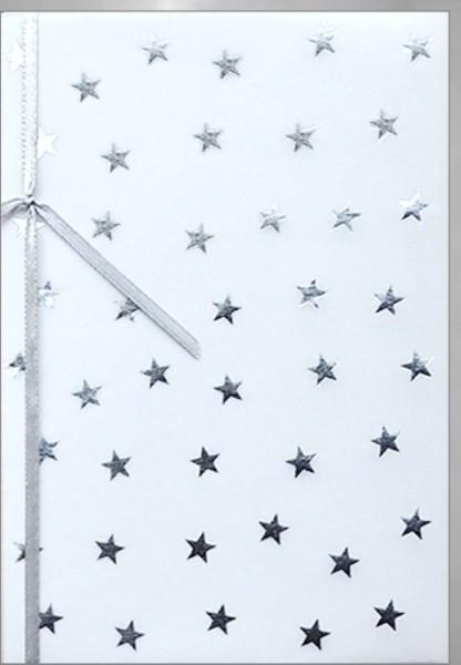 Umschlagk. Silver Stars Pergament