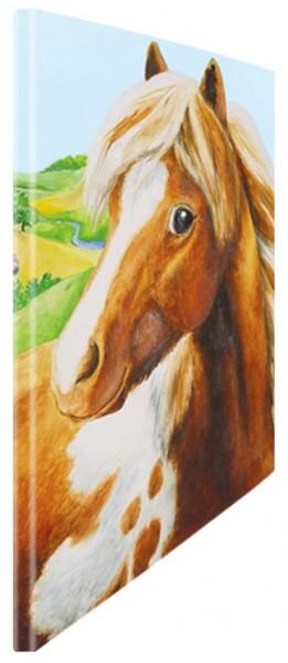 Schnellhefter Pony