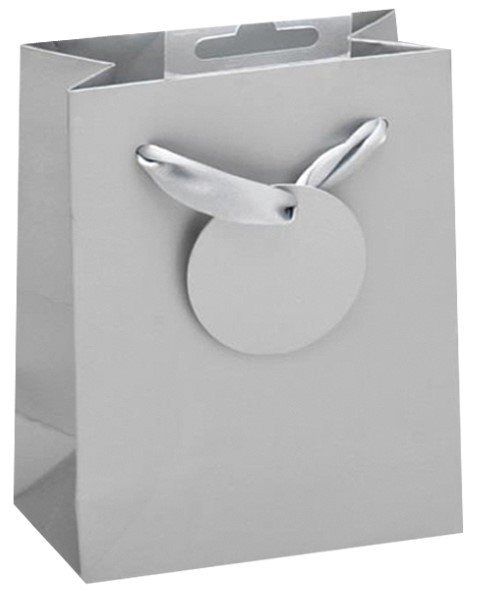 Basic Silver Bag small
