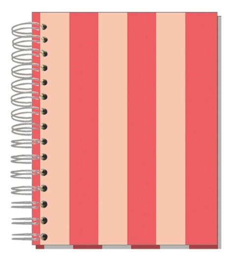 Buch A5 Streifen Korall Rosé