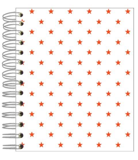 Buch 12x15 Neon Sternchen