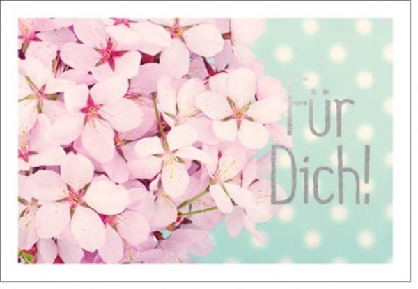 Umschlagk. LM Rosa Blüten