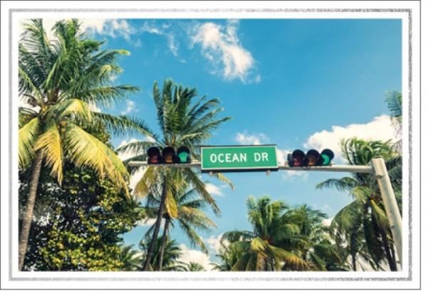 Umschlagk. LM Ocean Drive
