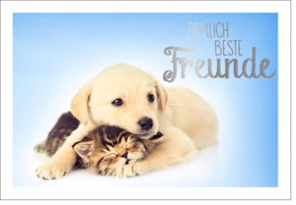 Umschlagk. LMA Hund & Katze Freunde