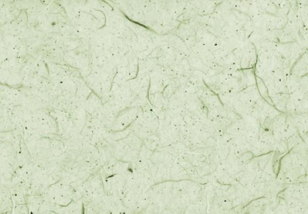 Silk Paper hellgrün 50x70