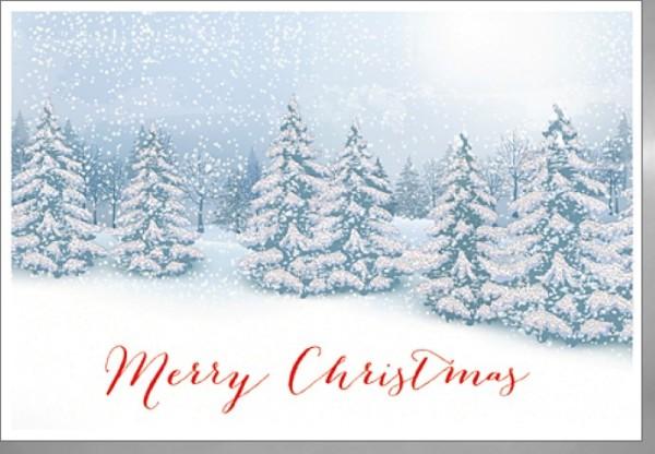 Umschlagk.Merry Christm.Winterlandschaft
