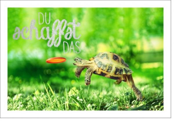 Umschlagk. LMA Schildkröte schaffen