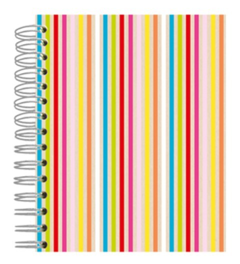 Buch A5 Neon Color Stripes