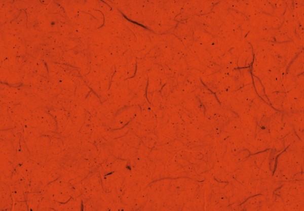 Silk Paper orange 50x70