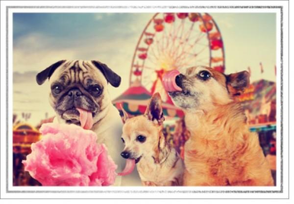 Umschlagk. LMA Hunde Riesenrad