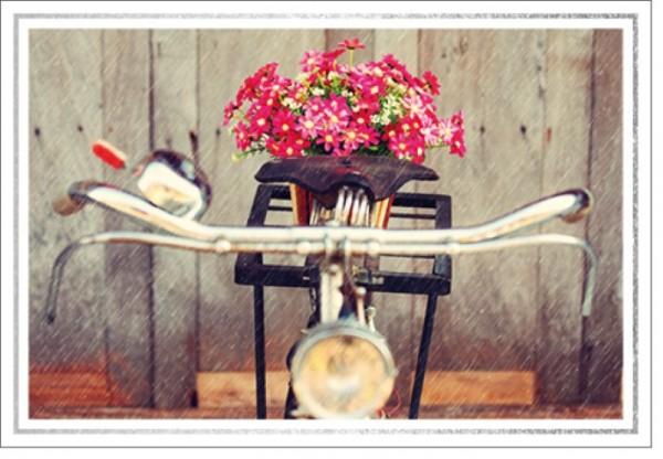 Umschlagk. LM Fahrrad mit Blumen