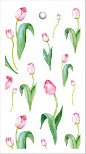 Tags Tulpen
