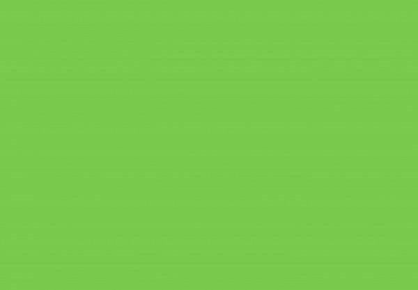 Basic grün 50x70