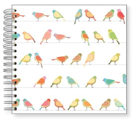Fotoalbum 24x24 Birdy-Vogelparade