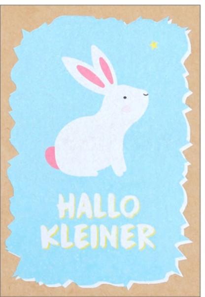 Umschlagk. pp Hallo Kleiner
