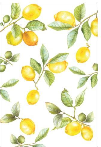 Umschlagk. LR Lemontree