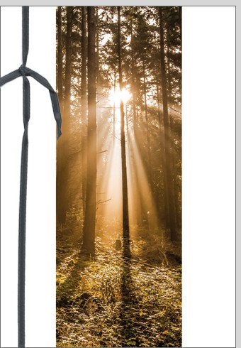 Umschlagkarten Trauer Lichtspiel Baum