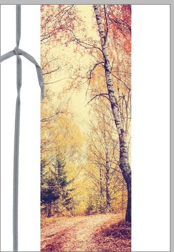 Umschlagkarten Trauer Waldweg