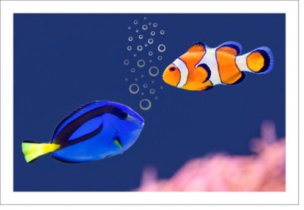 Umschlagk. LMA Nemo Blubberblasen